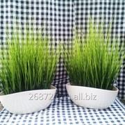 Трава искусственная в горшке фото