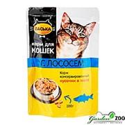 Корм ВАСЬКА для кошек 100г лосось желе фото