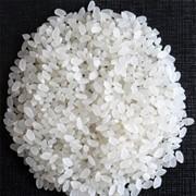 Рис круглый в мешках по 50 кг Краснодар фото