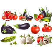 Консервы овощные пастеризованные фото
