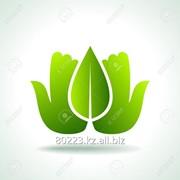 Природоохранное проектирование, нормирование, экологическое проектирование фото