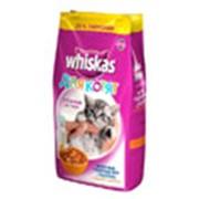 Корм Whiskas для котят 1,9 кг фото