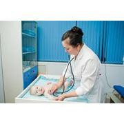 Консультации врача гомеопата фото