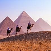 Лучшие цены на туры в Египет, поиск туров фото