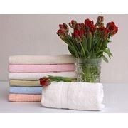 Банные полотенца марки TAC фото