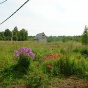 Земельный участок под крестьянско-фермерское хозяйство 20 гектаров фото