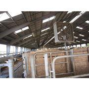 Система вентиляции для коров в коровнике фото