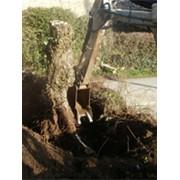 Выкорчевка деревьев мини-экскаватором Komatsu быстро фото