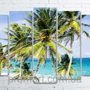 Модульна картина на полотні Пальми на пляжі код КМ100150(132)-025 фото