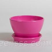 Фиалочница КС 0 роз фото