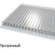 Сотовый поликарбонат 8мм прозрачный BORREX (Боррекс) фото