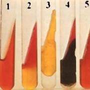 Среда Олькеницкого (трехсахарный агар с мочевиной) фото