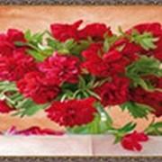 Гобеленовая картина 75х145 GS71 фото