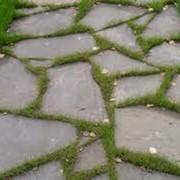 Укладка каменных дорожок фото