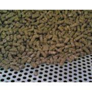 Комбинированный корм — смесь зернового сырья продуктов с высоким содержанием белка витаминов и микроэлементов для кормления животных. фото