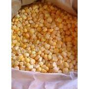 Кукуруза замороженая фото