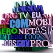 Домен .com / .net / .org / .info / .biz фото