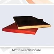 Мат гимнастический (защитный) фото