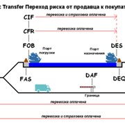 Expertise in CIS and Russia фото