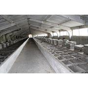 Комплексы агропромышленные в Молдове фото