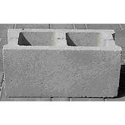 Cтеновой блок (Фортан) фото