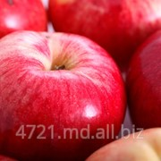 Яблоки натуральные в Молдове фото