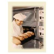Оборудование для хлебопекарной промышленности от Colos SRL фотография