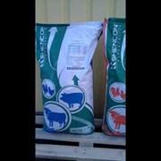 Комбікорм стартер для телят 2-6 міс. (СП 17%) фото