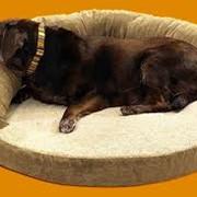 Лежанки для собак, лежанки для животных фото