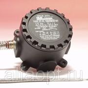 Капиллярный термостат Capstat 0-40°C, 16A макс, взрывозащищенный EEx d IIC T6 фото