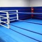 Школа бокса фото