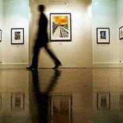 Услуги организации художественных выставок фото