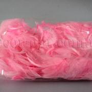 Перья розовые 12 гр 006898 фото