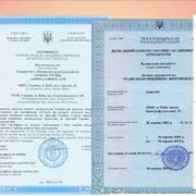 Лицензия на производство и торговлю алкогольными напитками и табачными изделиями фото