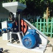 Экструдеры зерновые, производительность 150 кг/час фото