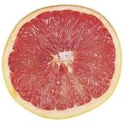 Грейпфруты фото