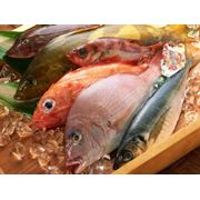 Ингредиенты для продукции из рыбы фото