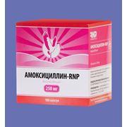 Амоксициллин - RNP фото