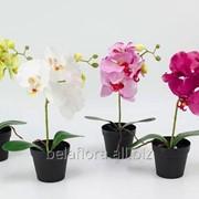 """Цветок искусственный """"Орхидея мини в горшке"""" арт. DON03159 фото"""