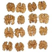 Орехи грецкие на экспорт, скупаем грецкий орех у заготовителей , населения. фото