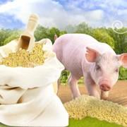 Витаминно-белковые добавки, кормовые минеральные добавки от производителя фото