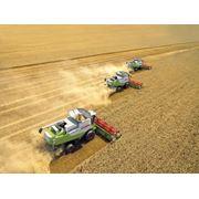 Комбайны зерноуборочные фото