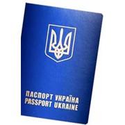 Услуги в получении паспортов и виз фото