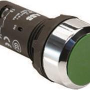 Кнопка CP1-30G-11 зеленая без фиксации 1НО+1HЗ фото