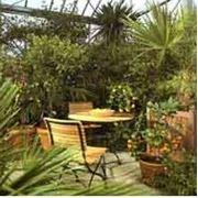 Оформление помещений и зимних садов. фото