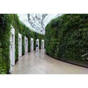 Вертикальное оформление сада фото