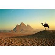 Египет. Вылет из Минска фото