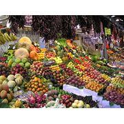 Услуги по таможенному оформлению фруктов и овощей (экспорт реэкспорт) фото