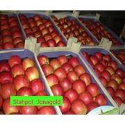 Ящики деревянные для яблок фото