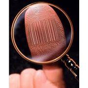 Детективные услуги для юридических лиц фото